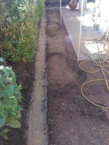 Befor concrete edging