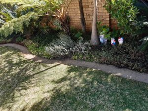 Garden edging pretoria